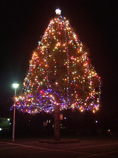 敷島公園 クリスマスツリー